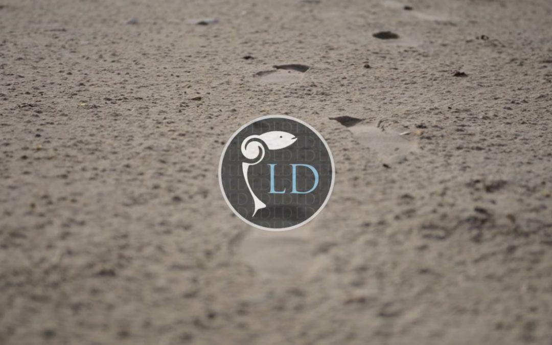 Capture de vidéo de présentation de Lionel Durot artisan fumeur de saumon bio en Morbihan